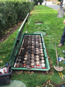 septic-tank-cleaning-south-prairie-wa