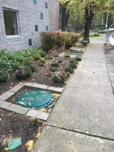 Everett-Emergency-Septic-Pumping