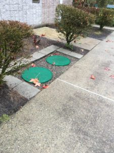 drain-field-repair-edgewood-wa